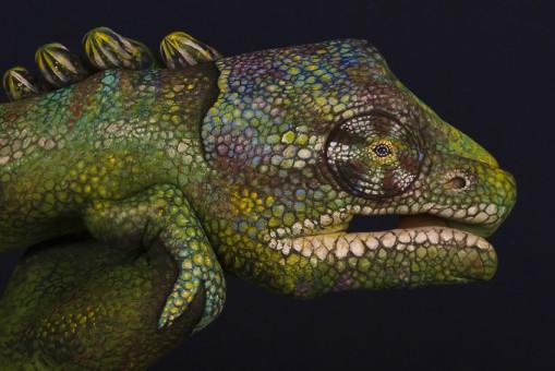 Chameleon-509x340