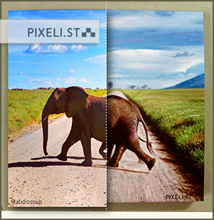 Pixelists artists turn your favorite photos into handmade, photorealistc oil paintings!