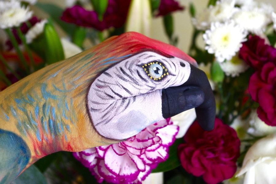 paul_the_hand_art_parrot_by_klairedelys-d45yjje