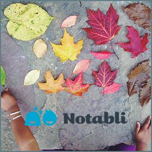 notabli11