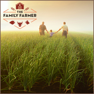 The Family Farmer is an interactive documentary game that challenges visitors to create and manage their own virtual farm, raising awareness about the large and small issues specific to family farms.