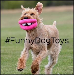 funnydogtoys