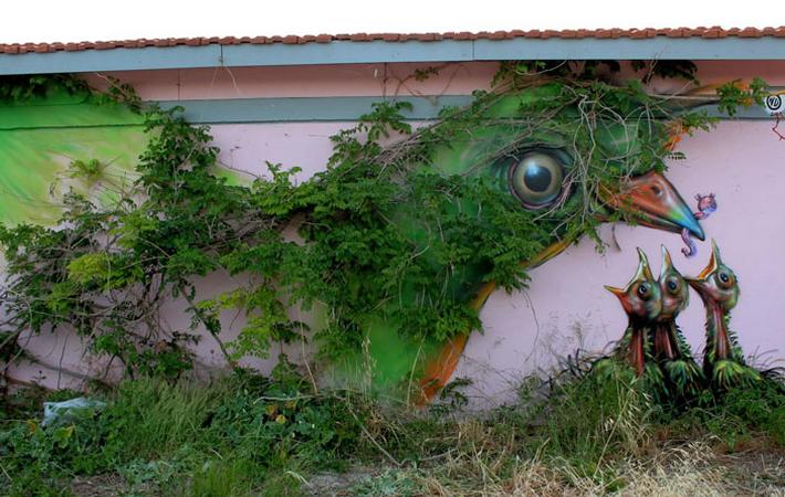 Nature Graffiti