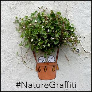 naturegraffitiiewq
