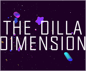 thedilladimension2