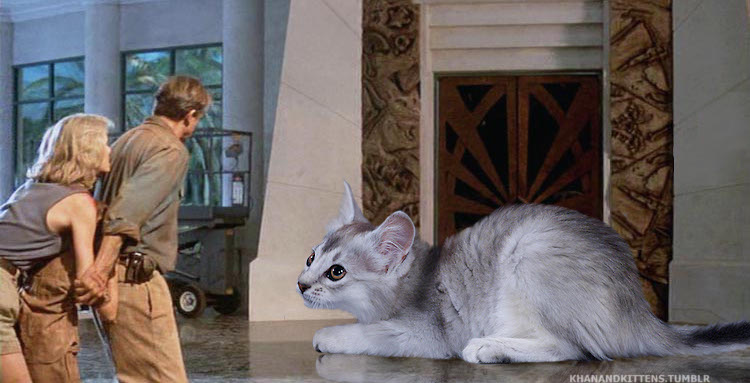 someone-replaced-all-of-the-dinosaurs-in-jurassic-park-with-cats-3