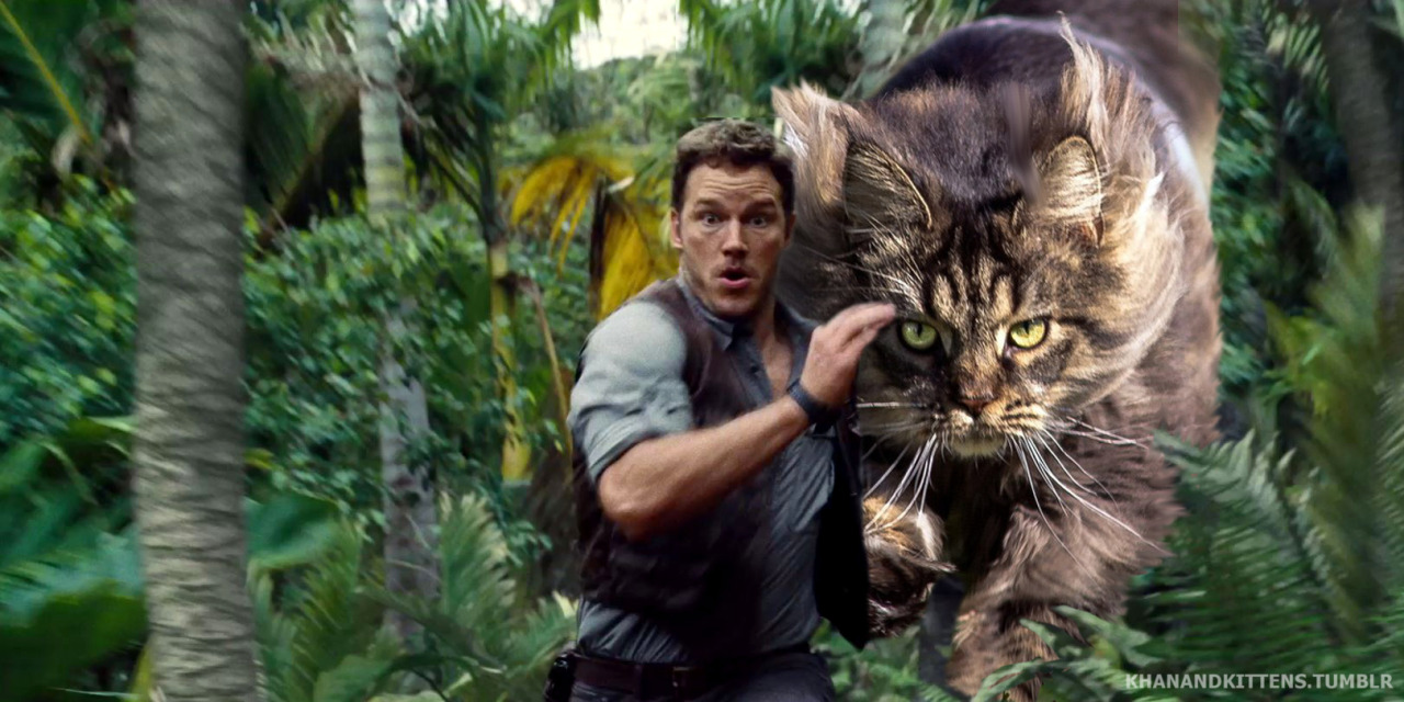 someone-replaced-all-of-the-dinosaurs-in-jurassic-park-with-cats-6