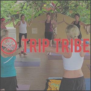 triptribe1