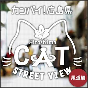 catstreetview5