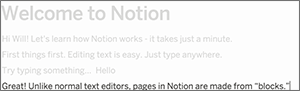 notion2
